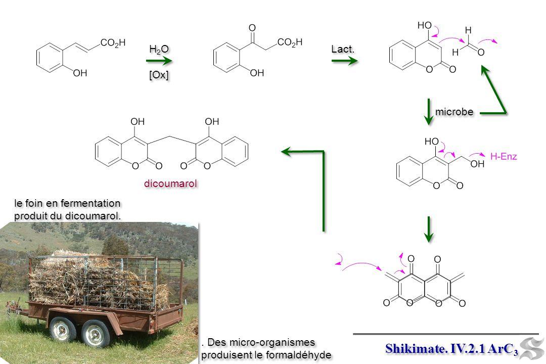 Shikimate. IV.2.1 ArC3 H2O [Ox] Lact. microbe dicoumarol